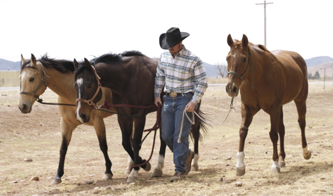 cowboy-and-three-horses-in-texas